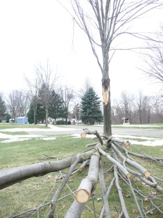 Ice storm hits upstate New York